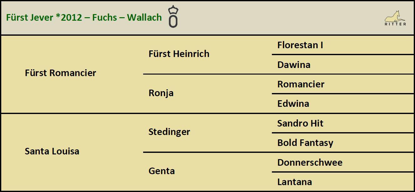 Pedigree FÜRST JEVER Wallach v. Fürst Romancier x Stedinger, Oldenburger, geb. 2012