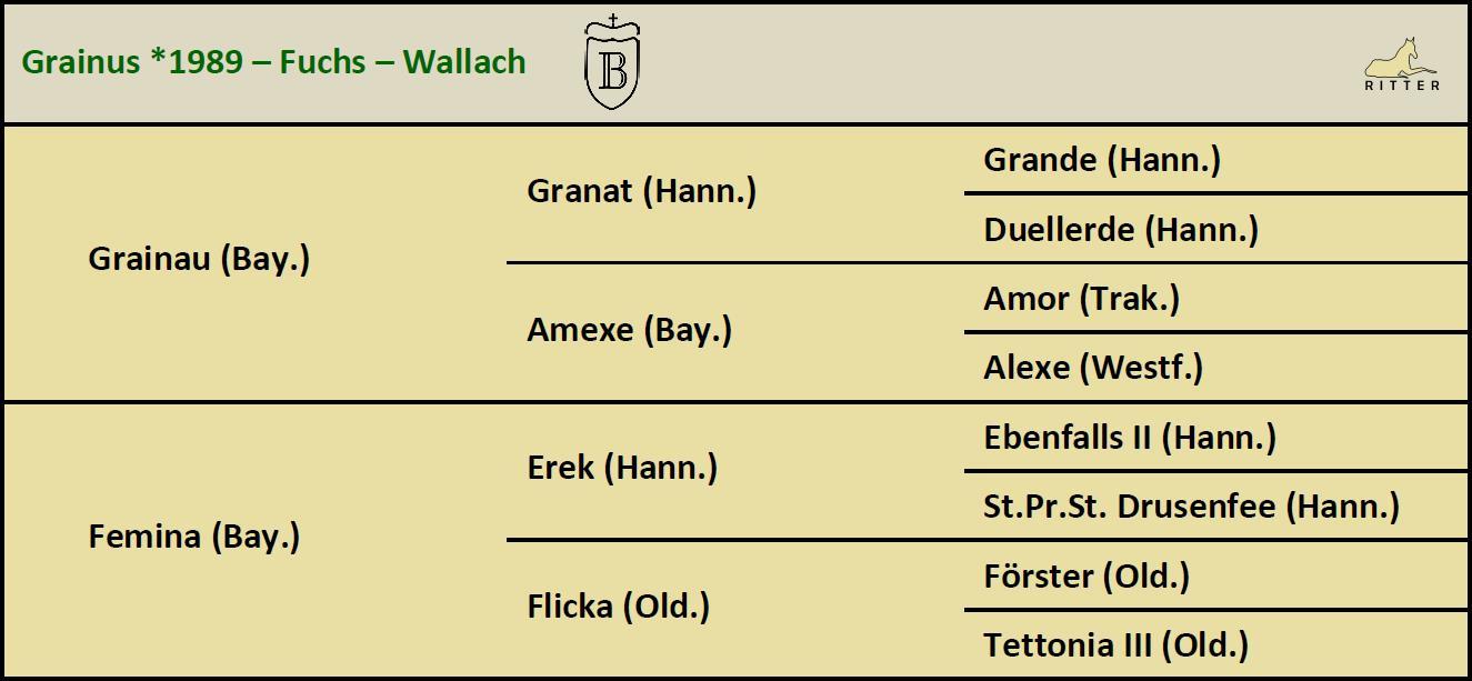 Pedigree GRAINUS Wallach v. Grainau x Erek, Bayer, geb. 1989